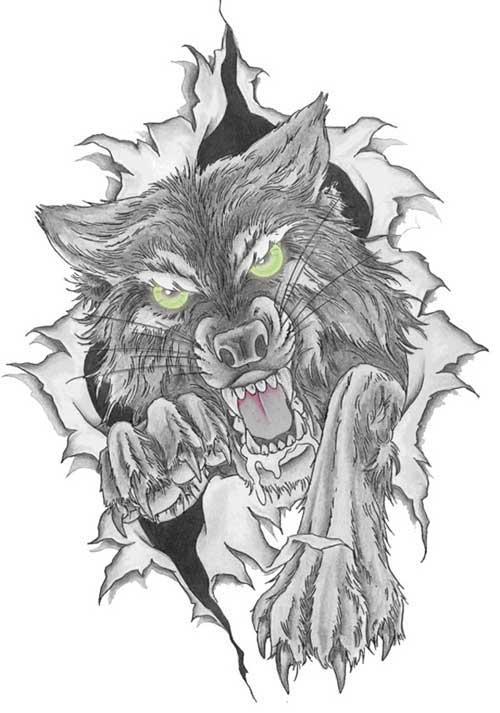 рисунки волка для тату