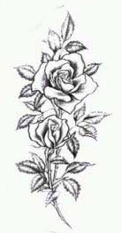 фото розы татуировки