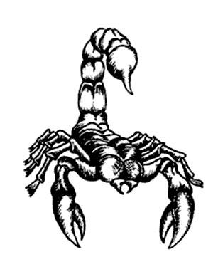 знак зодиака скорпиона картинки